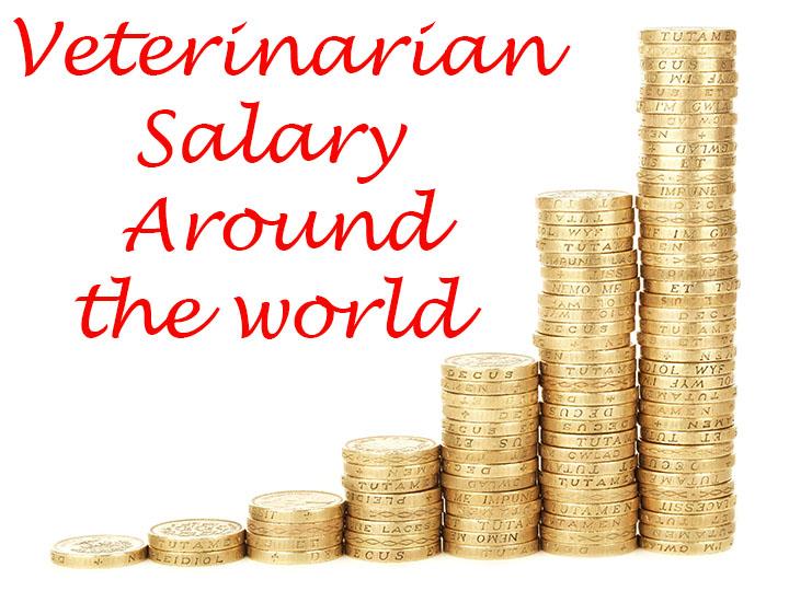 Veterinarian salary around the world