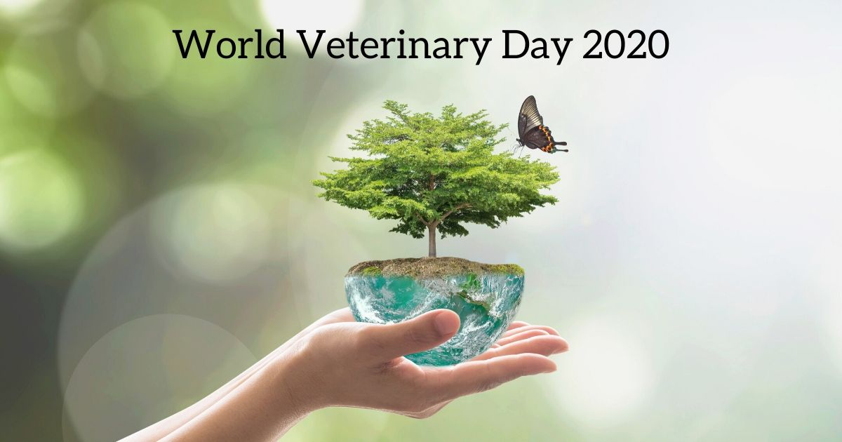 world veterinary day 2020