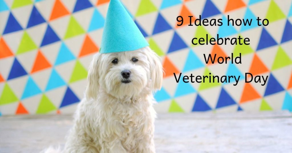 9 Ideas how to celebrate World Veterinary Day